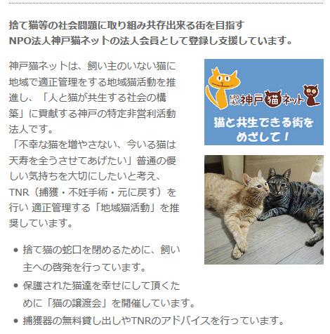「人と猫が共生する社会の構築」に貢献。NPO法人神戸猫ネットの法人会員として登録支援。